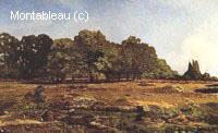 Avenue de Châtaigniers près de la Celle-Saint-Cloud