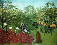 Forêt tropicale avec les singes et le serpent